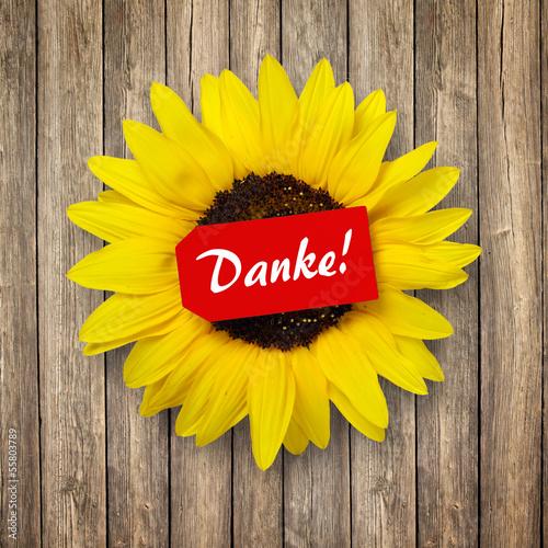 Sonnenblume mit Schild Danke