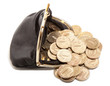 Leather purse and gold coins