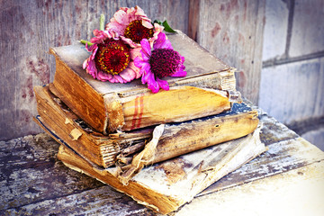 romantic vintage background with dry flowers and old books