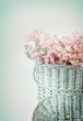 Beautiful vintage pastel pink flowers close-up