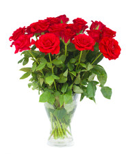 bouquet  of scarlet roses in vase