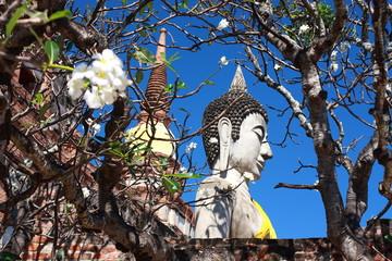Yai Chai Mongkol temple, Ayutthaya, Thailand