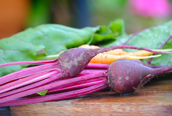 Fresh beet roots, macro shot