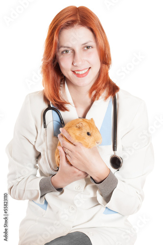 Woman vet with a guinea pig in his hands