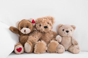 Drei Teddybären - Familie mit Teddy - Familiengründung