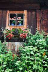 altes Blockhaus mit Bauerngarten in Österreich