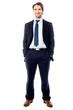 Confident handsome business executive