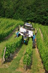 machine d'entretien des vignes