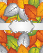 Vector banner and seamless leaves background included