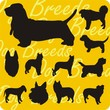 Dog breeds - vinyl-ready vector illustration