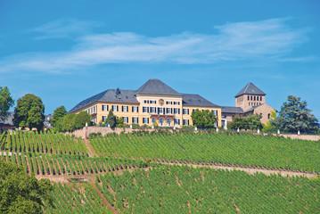 Schloss Johannisberg in der berühmten Weinlage im Rheingau