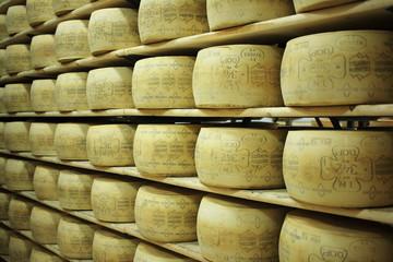 formaggi valle di fassa