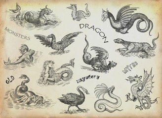 Dragons illustration