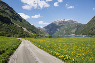 Wiesenlandschaft am Geirangerfjord