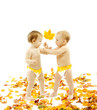Kids in diapers presenting autumn maple leaf as a gift