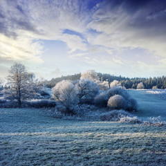 a winter morning with a beautiful sunrise - frozen landscape