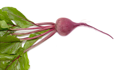 Beetroot with leaves on white background