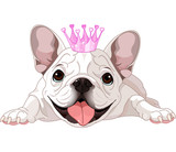 Royalty bulldog poster