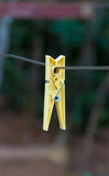 Clothes peg on clothesline cord