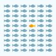 Fisch Parade Gleichförmigkeit Monotonie