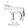 Funny Halloween cuts of unicorn diagram