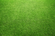 Perfect green grass at the sport field or back yard - 55884713