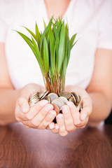 Hand Holding Coin With Plant