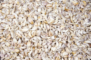 fresh vegetable garlic lobule background