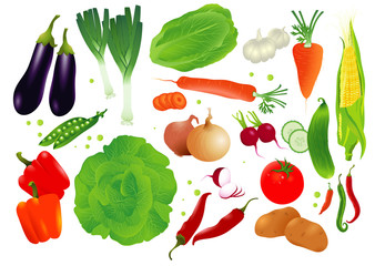 Vector set of raw vegetables.