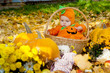 Child in pumpkin suit sitting in wooden basket on autumn leaves