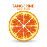 tangerine citrus fruit