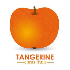 tangerine citrus fruit
