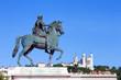 Statue of Louis XIV in Lyon