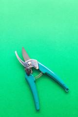 Garden scissors on green background