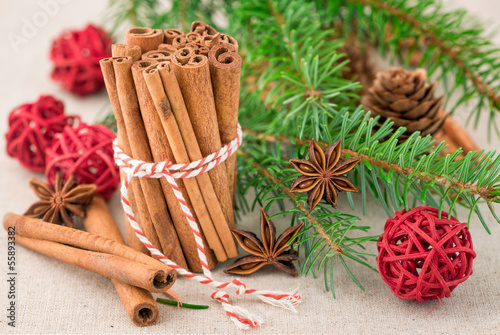 Anise and cinnamon with fir