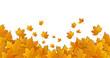 Hintergrund Herbst / Laub / Blätter