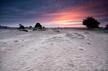 dramatic sunrise over sand dunes