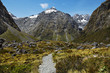 Neuseeland, milford sounds,