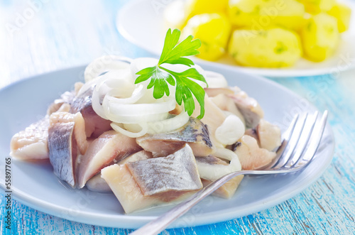 herring with onion on blue plate