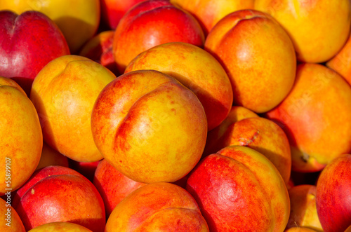 Nectarine on pile