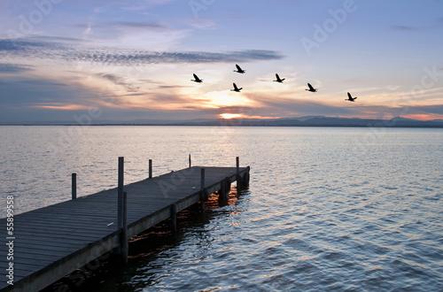 Fotobehang Een Hoekje om te Dromen sobrevolando el mar
