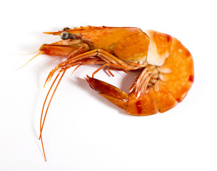 Cooked unshelled tiger shrimp isolated on white