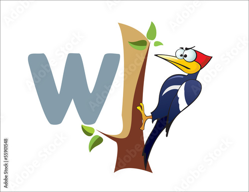 Cartoon Woodpecker and letter W
