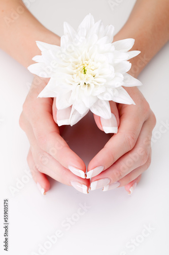 white flower with hands