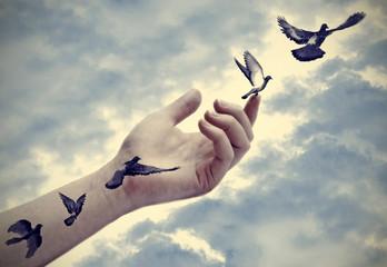 Bird tattoos come to life, freedom concept