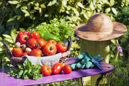 Some vegetables in a basket