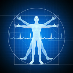 Menschliche Anatomie abgebildet wie vitruvian man