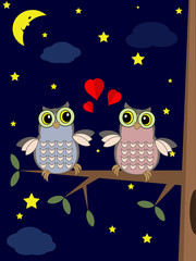 Owls in the night .