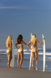 Women Surfer Girls In Bikinis With Surfboards At Beach