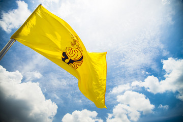 Royal flag of king rama IX in Thailand